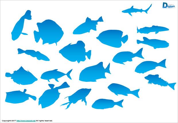 「魚 フリー」の画像検索結果